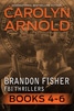 Brandon Fisher FBI Thriller Box Set Two: Books 4-6 by Carolyn Arnold